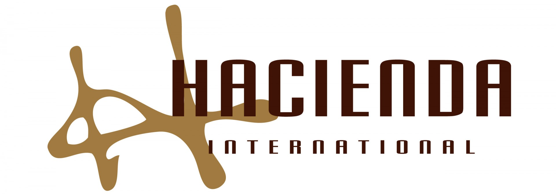 HACIENDA INTERNATIONAL